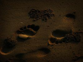 Footsteps in the sand by TheEndWhereIBegin