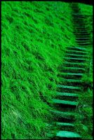 Green Way by NoNicknameNeeded