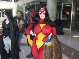 Spider-Woman 2 by pikaman206