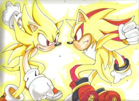 sonic vs shadow by lancesonora