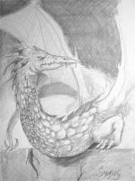 Smaug sketch 2 by fawnmaiden