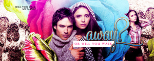 the vampire diaries banner by mia47