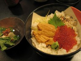 japanese food 1 by chubbysoul