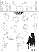 Destiny Model Sheet by faithandfreedom
