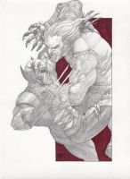 Wolverine vs Sabretooth by JesterretseJ
