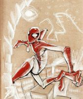 Living on the Edge, Fighting Crime, Spinning Webs by BlackArachnid
