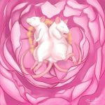 Conjoined Rats in Peony by Jadiekins