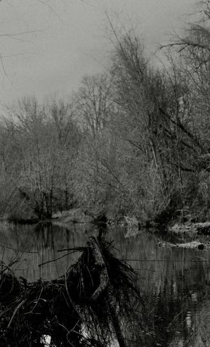 Black creek... by thewolfcreek