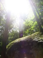 a rock in a forest by awakeandsleeping