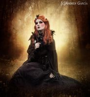 The last Autumn by AndyGarcia666