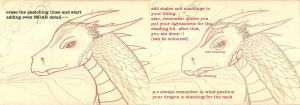 Dragon Head Tutorial Step 3 And 4 by Marl1nde