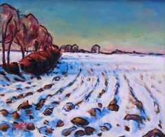 Snowy Fields in late Evening Light by Art-deWhill