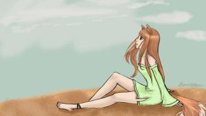 Spice and Wolf: Horo by Ocama