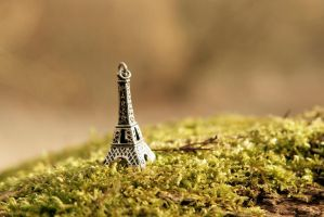 Le Petit Paris by CanonAdventures