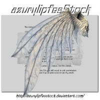 3D object - wings3 by AzurylipfesStock