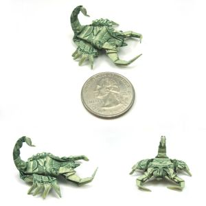 http://th03.deviantart.com/fs16/300W/f/2007/188/c/8/New_pics__Dollar_Scorpion_by_orudorumagi11.jpg