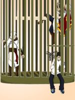 Why the caged assassin sings by Avibroso