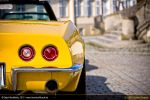 Stingrays at Rokoko Castle VI by AmericanMuscle