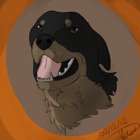 Rottweiler by NeonDefined