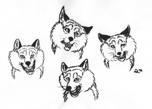 Toby's Expressions by B-JacobDawson