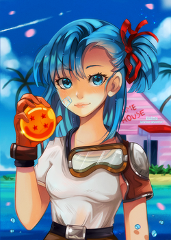 +Bulma - Adventure Begins+ by larienne