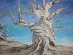 Inverse Roots by BrookeRyan
