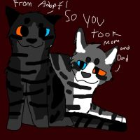 Kittens For Couple Adopt 1 by WolvesRockTheHouseXD