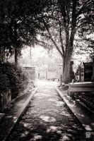 Pere Lachaise cemetary by sylvaincollet