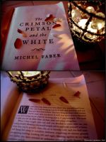 Michel Faber's The Crimson Petal and the White by Bonniemarie