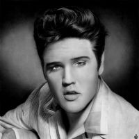 Elvis Presley by Stanbos