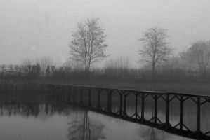 morning of lake XIII by fotonicu
