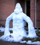 Snow Gorilla by alanbecker