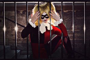 Behind Bard - Harley Quinn by MandaCowled