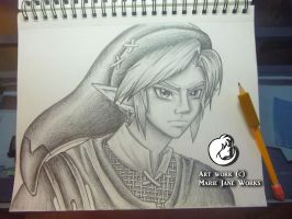 Link ~ Warrior of Courage by MarieJane67777