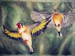 Goldfinch by PagesGarden