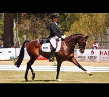 Extended. by EquusAustralia