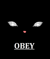 Obey Le Cats by animehero1