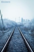 Cold Nothing by NXcamera