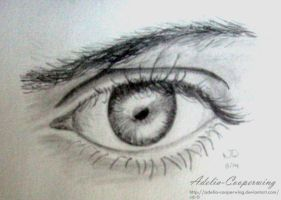 Male  Eye by Adelia-Cooperwing