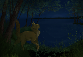 Night water by T-assel