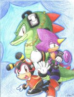 TEAM CHAOTIX by MissPiika