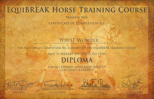 White Wonder Diploma by BlueFire-Phoenix