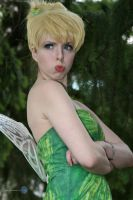 Tinker Bell by falcona
