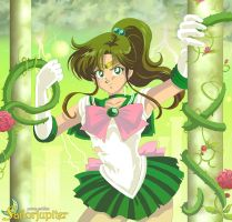 - Sailor Jupiter - by TechnoRanma