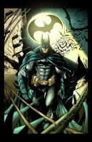 I'm Batman Colors by nahp75