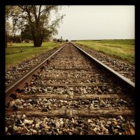 Life on the Tracks by Mazdi