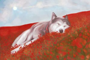 Dreaming husky by FigureEight