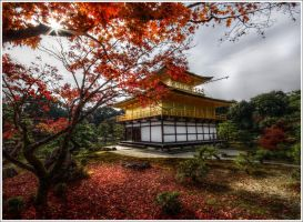 Backside of Kinkaku-ji, Kyoto by Graphylight