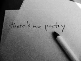 there's no poetry... by Schattmeibe