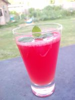 Watermelon Summer Splendid Recipe by IceyTurtleTea